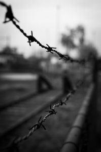 barbed-wire-black-and-white-crime-2057